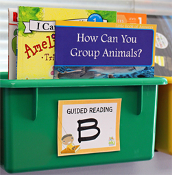 book-bin-labels-small